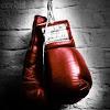 Boxing Picks Stats