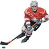 Hockey Picks Stats