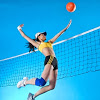 Voleyball Picks Stats
